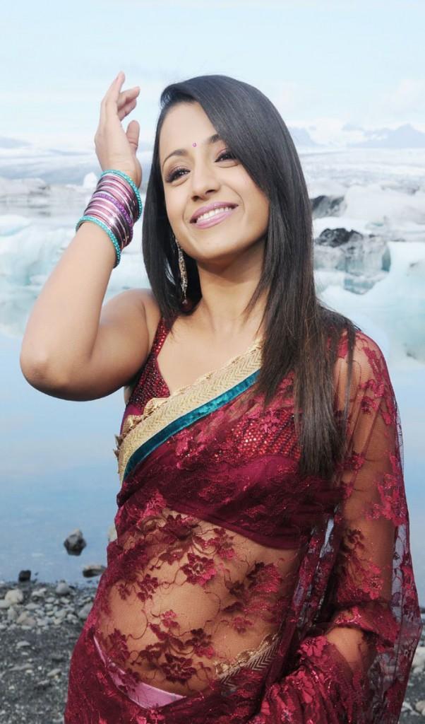 Cute Trisha in Saree Photos