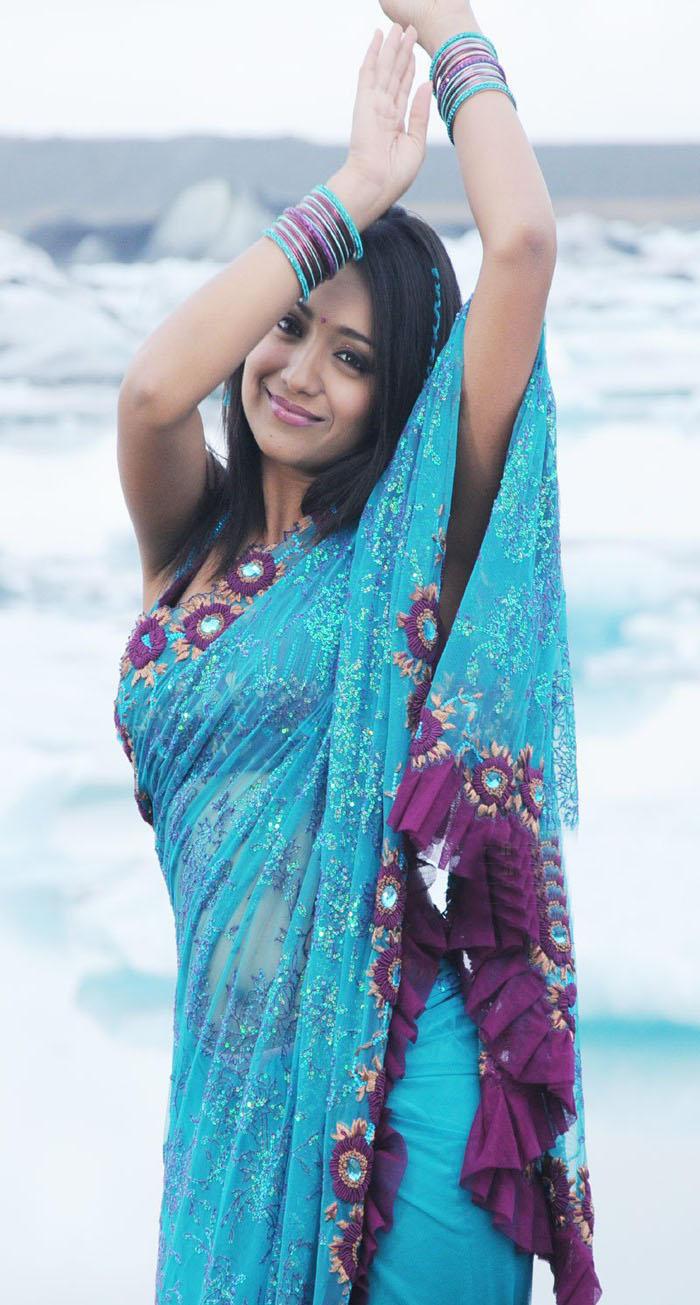 Trisha Latest Sexy Pics in Saree