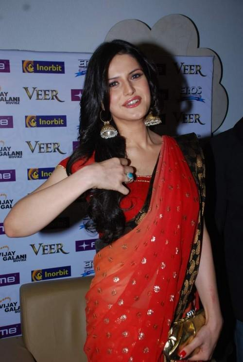 The Beautiful Zarine Khan image in saree