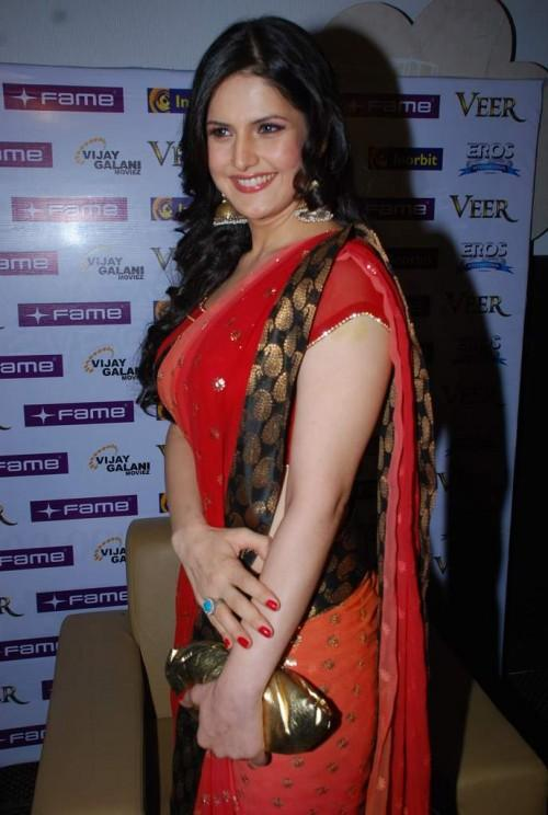 Zarine Khan beautiful saree pics