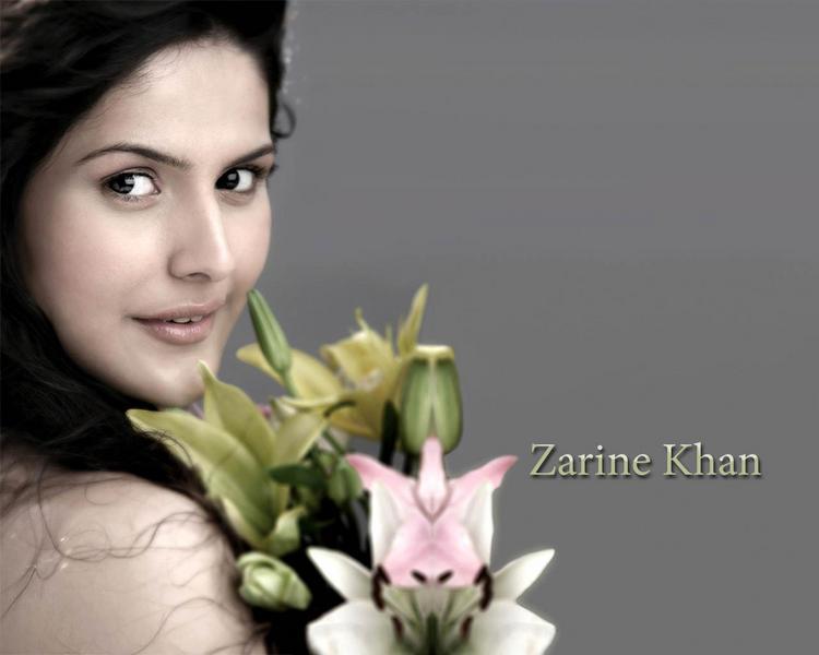 Zarine Khan sexy wallpaper