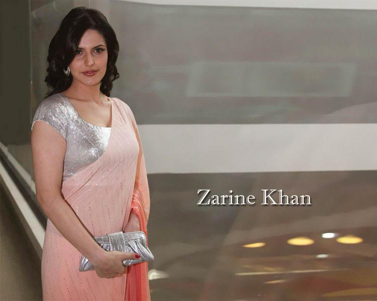 Zarine Khan in saree