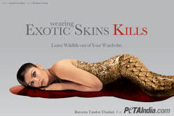 Raveena Tandon poses for PETAs Latest Ad against animal cruelty