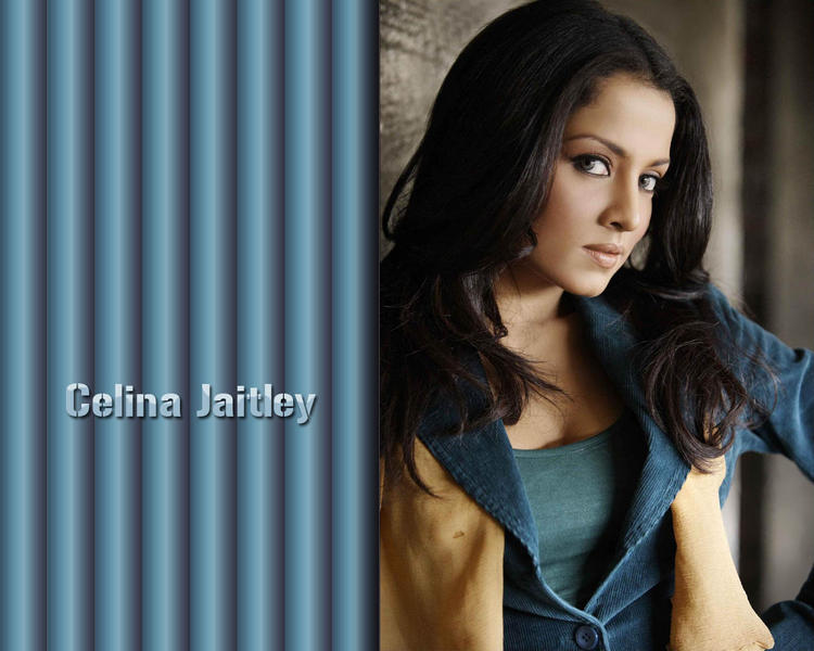 Celina Jaitley spicy look wallpaper