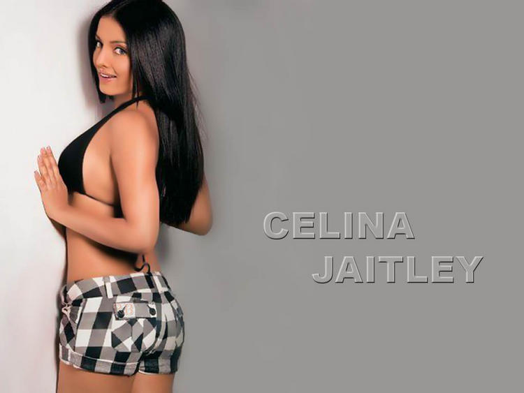 Celina Jaitley hottest and sexiest wallpaper