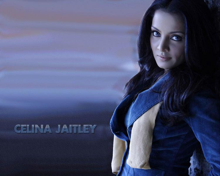 Celina Jaitley spicy wallpaper pics