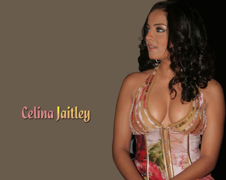 Hotty Celina Jaitley wallpapers
