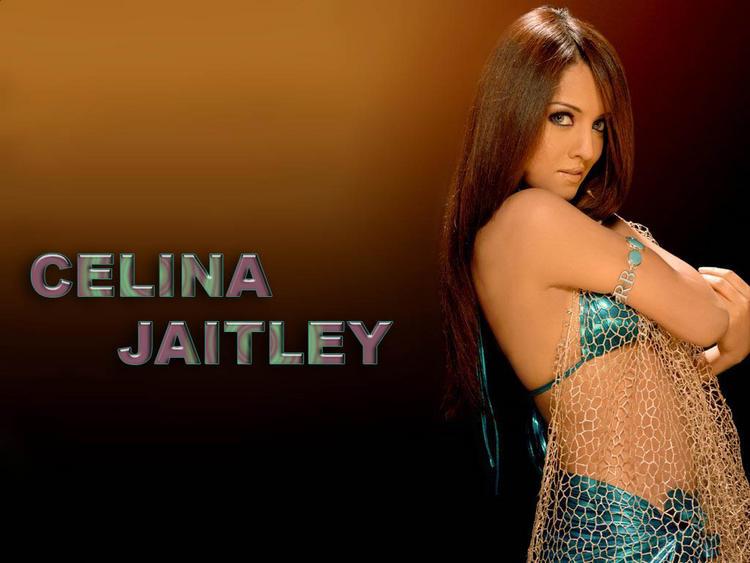 Celina Jaitley hot bikini wallpaper