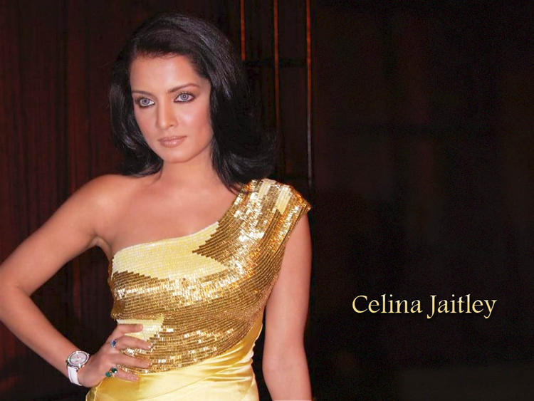 Celina Jaitley sexy and spicy look wallpaper