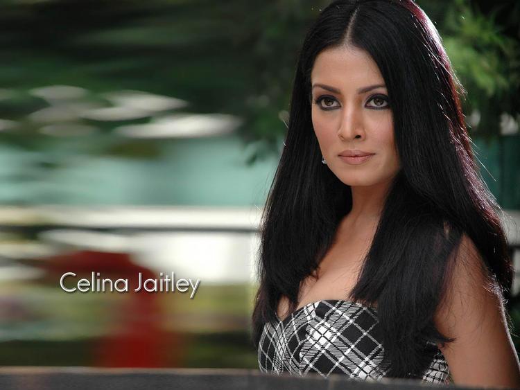 Celina Jaitley hot wallpaper
