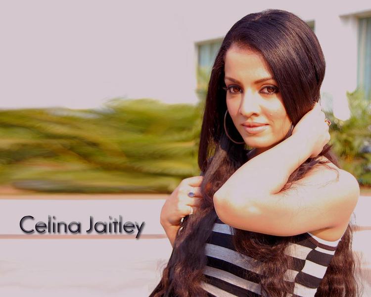 Celina Jaitley sexiest look wallpaper