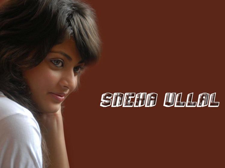Sneha Ullal best wallpaper