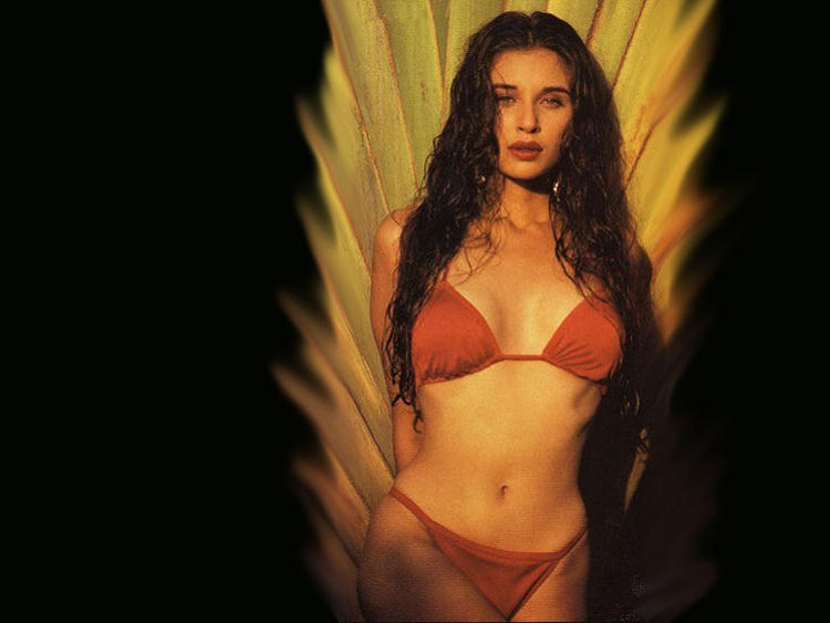 Lisa Ray in bikini hot pics