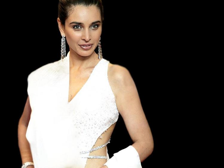 Lisa Ray in amazing dress pics