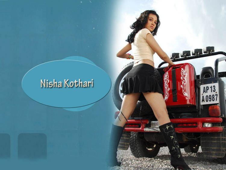 Nisha Kothari wallpaper