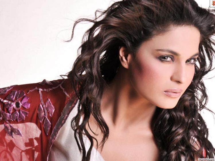 Sexy Veena Malik Hot Pic