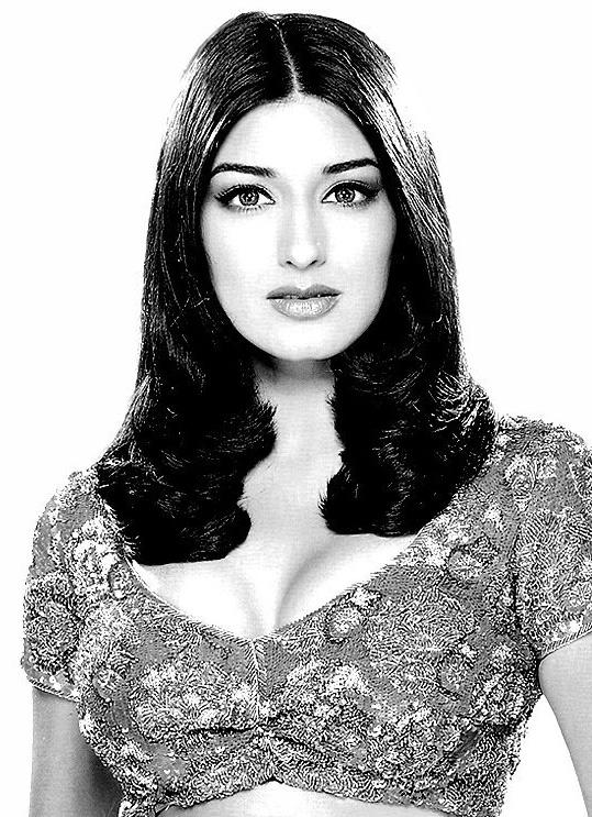 Sonali Bendre sexy blouse images