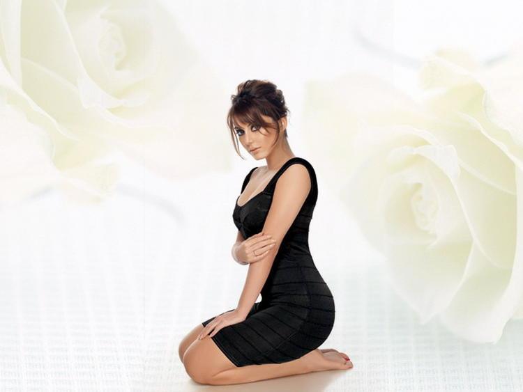 Minissha Lamba hot figure wallpaper