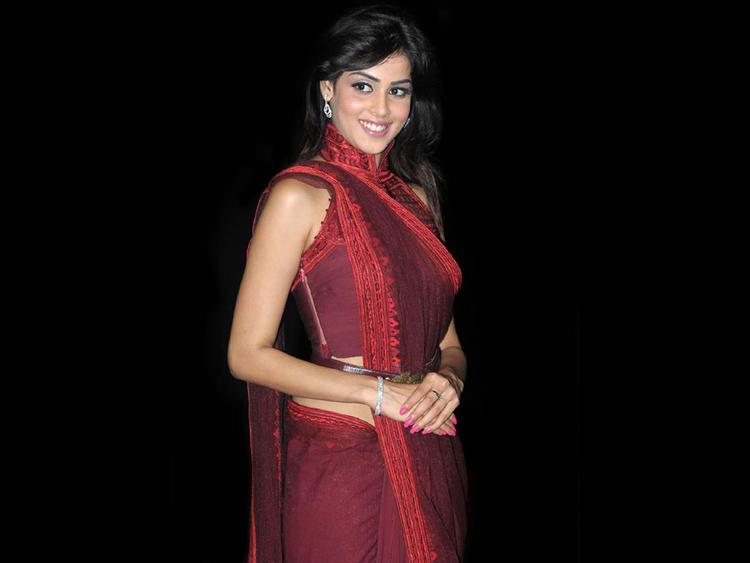 Genelia D'Souza in amazing saree stills
