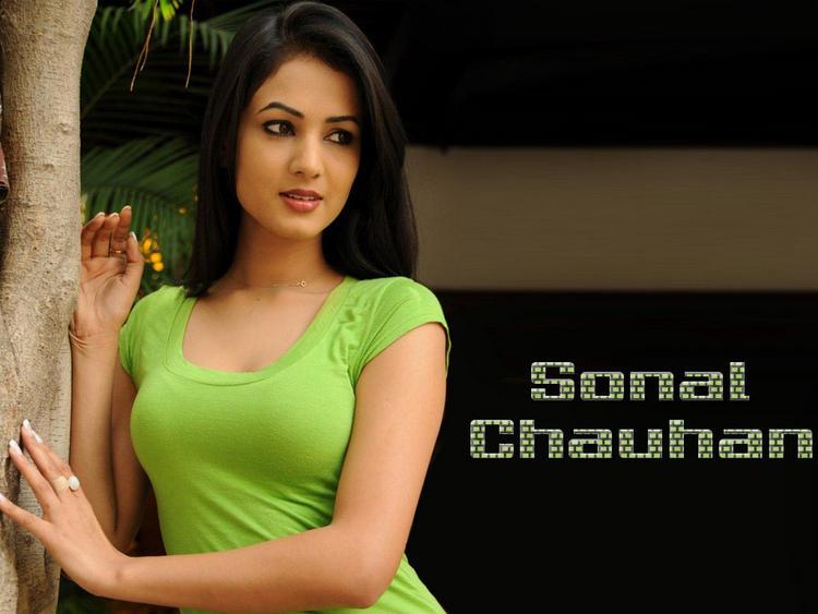 Sonal Chauhan glorious stills