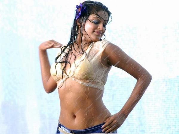 Priyamani hot sexy navel stills