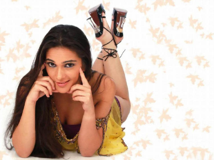 Spicy Tara Sharma hot figure still