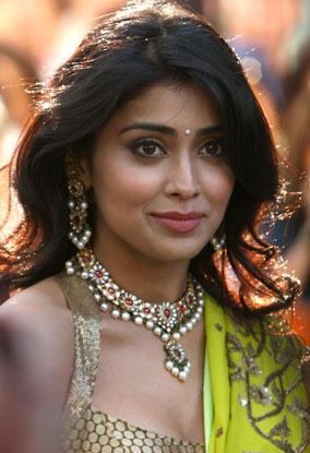 Shriya Saran cute hot look in saree
