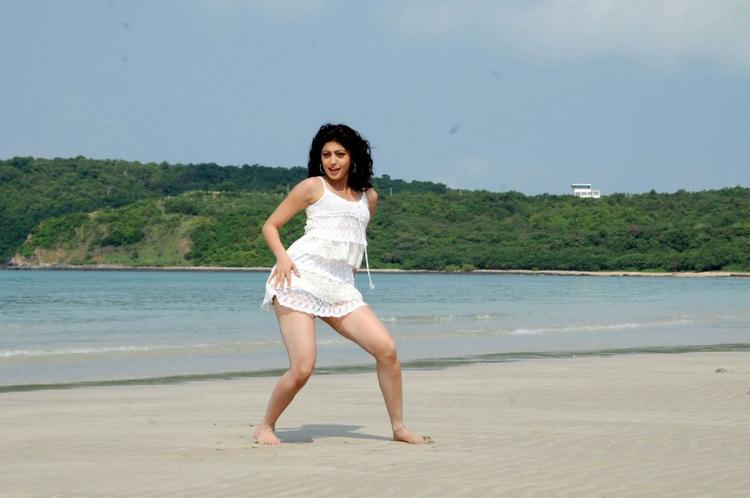 Udhayan movie pranitha sexy stills