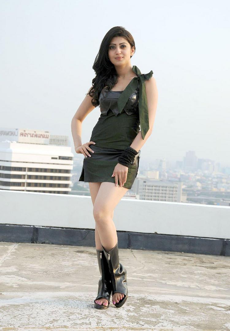 Udhayan movie heroine pranitha mini dress spicy stills