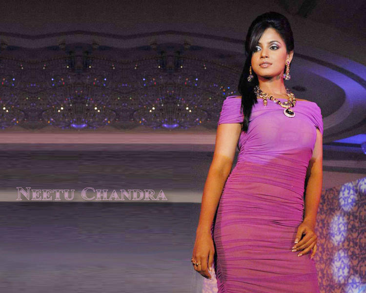 Neetu Chandra gorgeous wallpaper