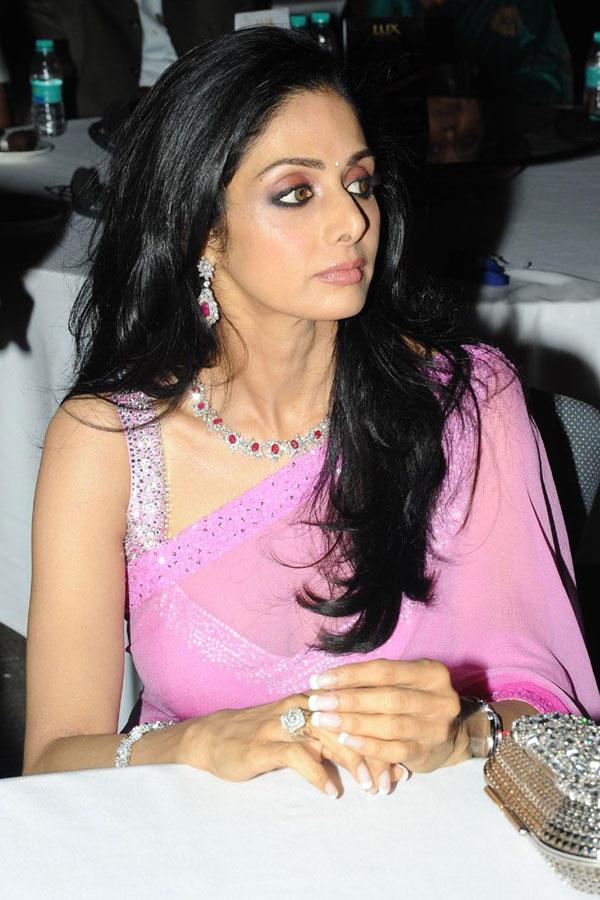 Sridevi in transparent saree hot pose