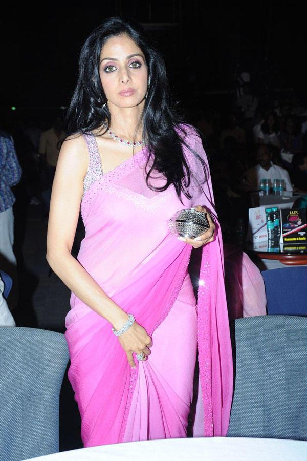 Sridevi Kapoor Hot in Transparent Saree