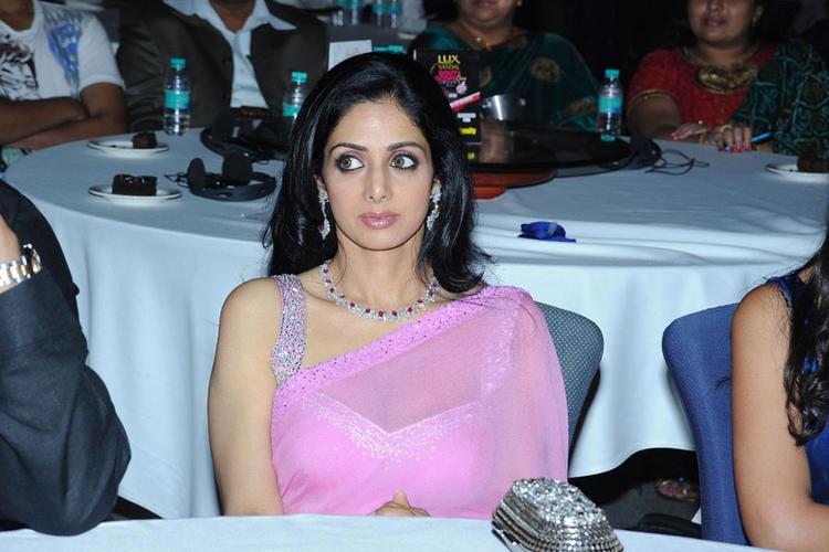 Sridevi at south scope cine awards 2010