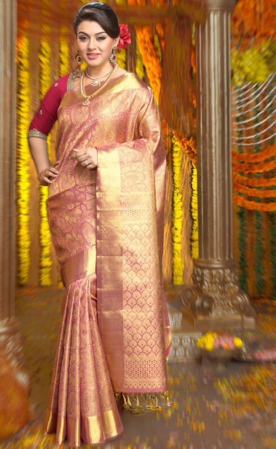 Hansika Motwani Wearing Chennai Silks Saree