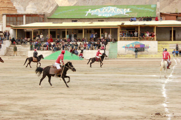 Polo Match Held at Ladakh