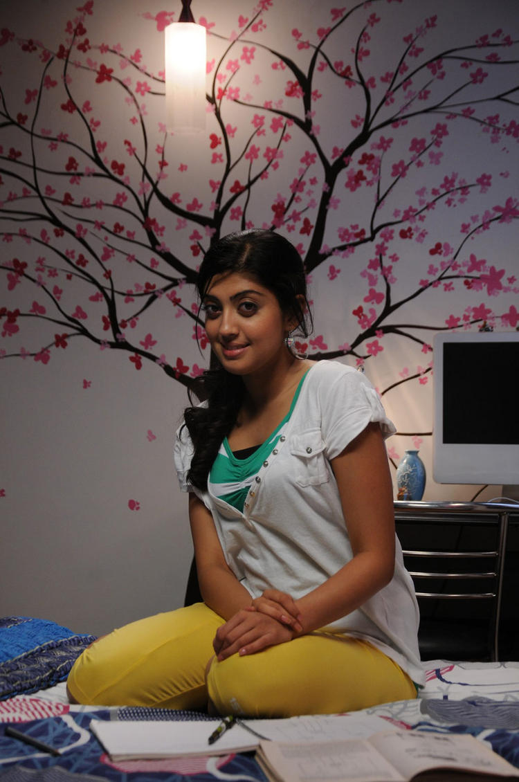 Cute Girl Pranitha Photo