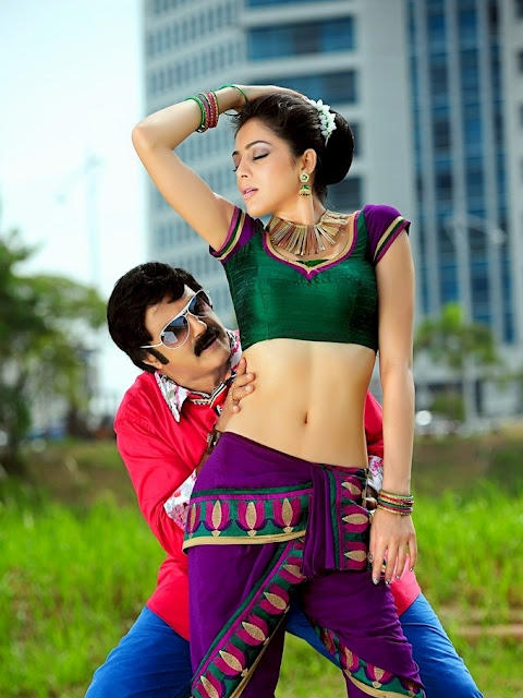 Balakrishna and Parvathi Spicy Hot Song Still In Srimannarayana