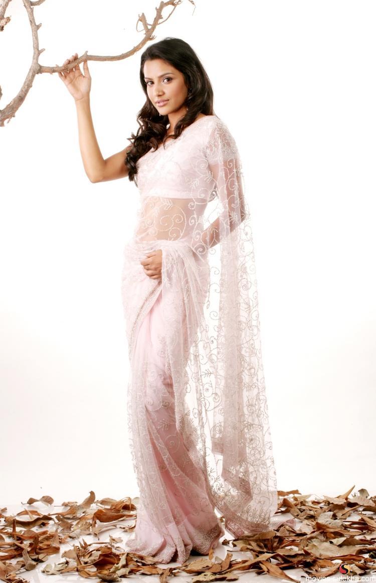 Priya Anand In Transparent Saree Sizzling Pose Photo Shoot