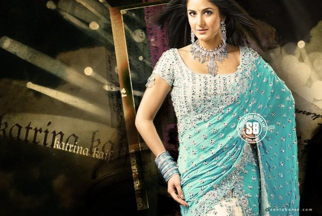 Katrina Kaif Hot Sexy Pose In Saree
