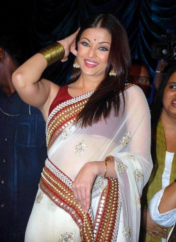 Aishwarya Net Saree Smiling Photo
