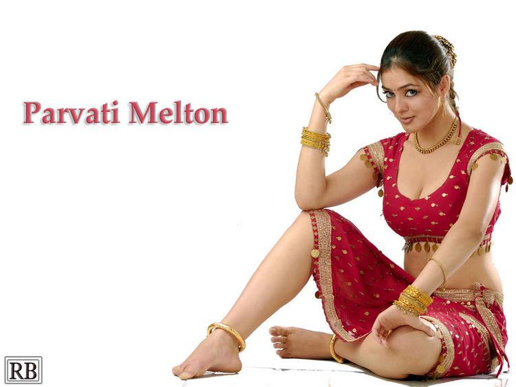 Parvati Melton Latest Hot Spicy Pose Photo