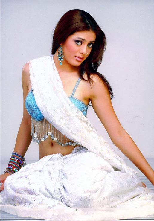 Parvati Melton Sexy Pose Photo Shoot In Saree