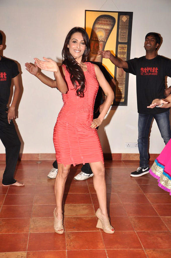 Hot Sizzling Actress Malaika Arora at Strut Dance Academy's 1st Anniversary Bash