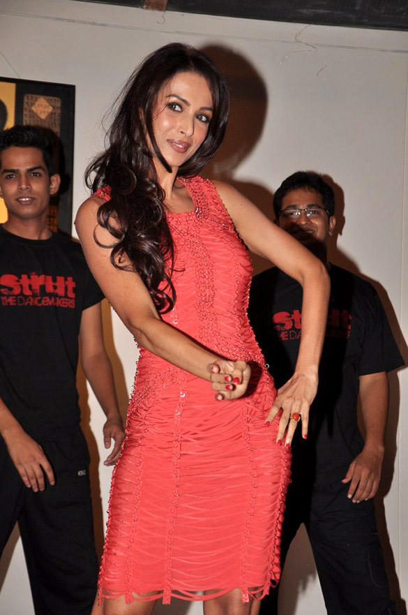 Malaika Wearing Pink Gown and Stunning Photoshoot at This Event