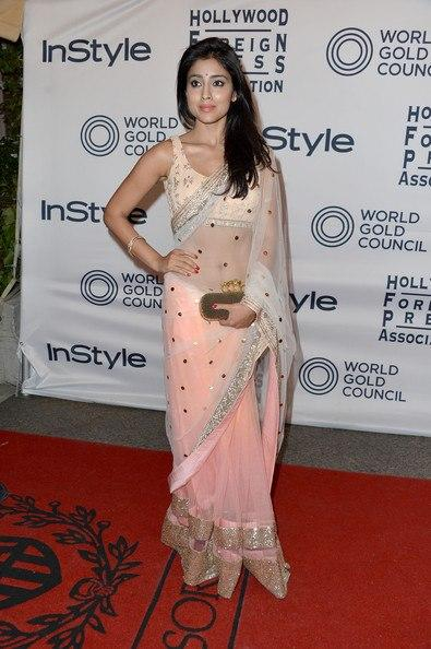 Shriya Saran In Net Saree at WGC and InStyle TIFF Party