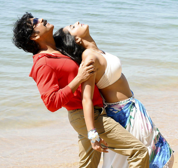 Nagarjuna and Anushka Romantic Song Still In Damarukam Movie