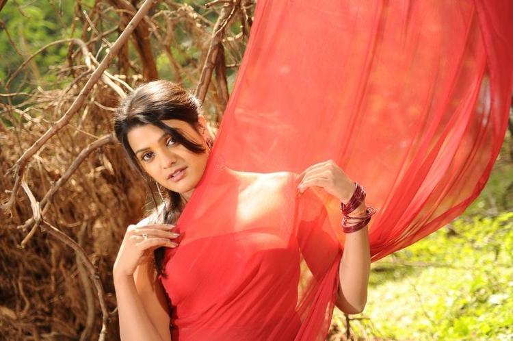 Tashu Kaushik In Red Hot Saree Photo Shoot