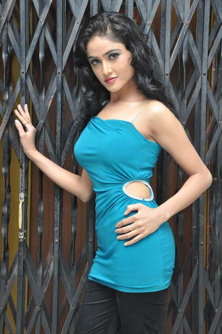 Telugu Heroine Sony Charishta Hot Looking Photo Shoot