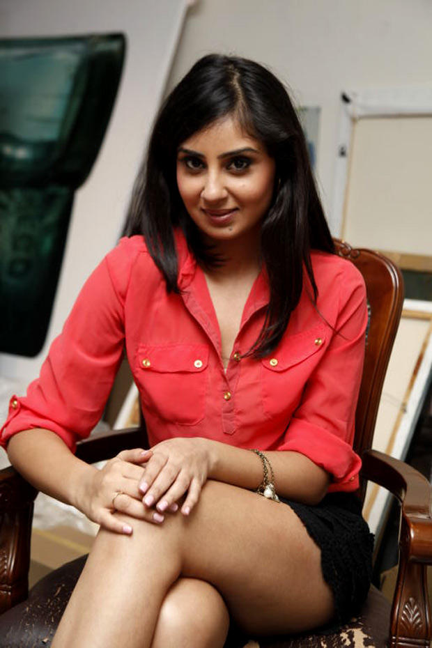 Bhanu Sri Mehra Sweet Sizzling Pose Photo Shoot