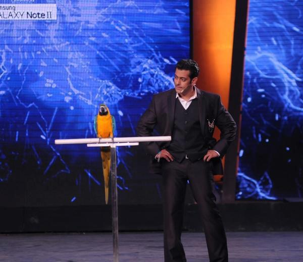 Salman Khan Was The Host Of Bigg Boss 6